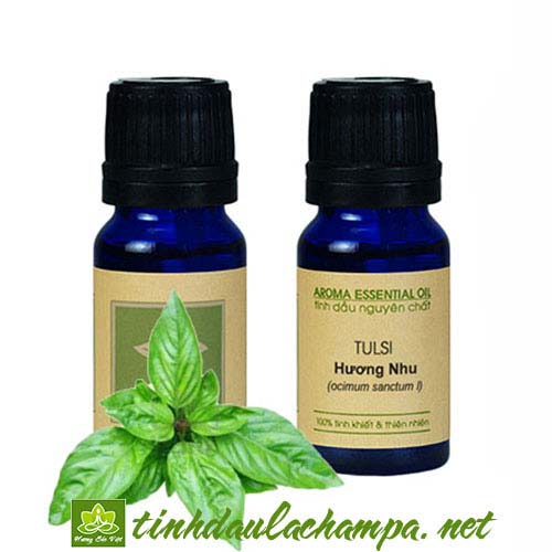 Bưởi và hương nhu, 2 loại tinh dầu dưỡng tóc tốt nhất bạn nên mua - 120033