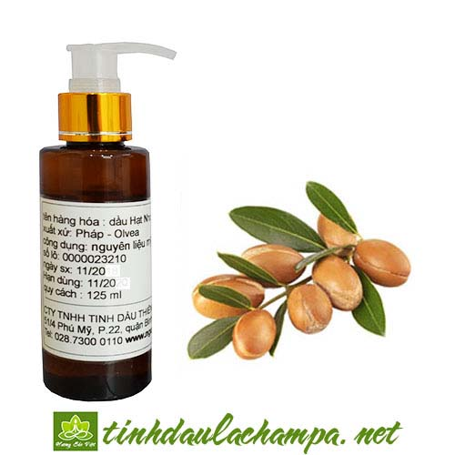 Dầu Argan - Argan seeds oil