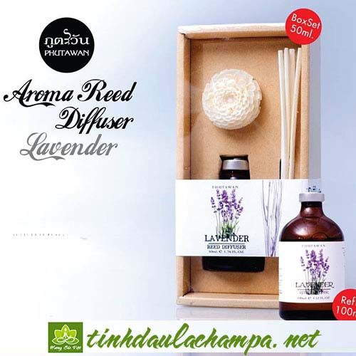 Tinh dầu hương hoa Lavender