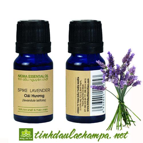 Tinh dầu Lavender - Oải hương Pháp nguyên chất