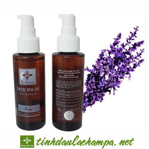 Dầu massage mặt Lavender