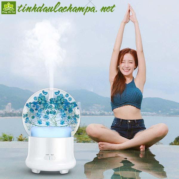 Máy khuếch tán tinh dầu hoa Cẩm tú cầu màu xanh, màu hồng - shop Hương Sắc Việt