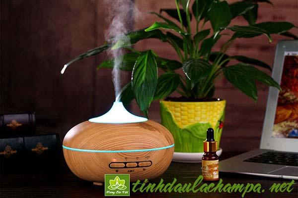 Liệu pháp trị bệnh hương thơm và các công dụng