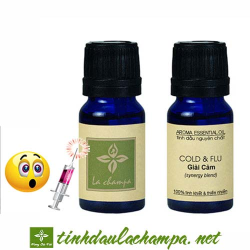 Những loại tinh dầu giúp phòng ngừa và trị bệnh cảm cúm