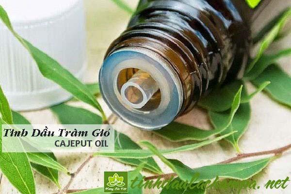 Phòng chống cảm cúm với tinh dầu Tràm gió - cajeput
