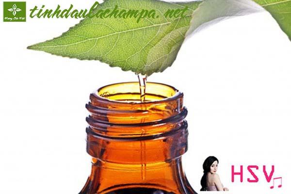 Tinh dầu tràm trà - tuyệt chiêu trị mụn cho hè nóng nực