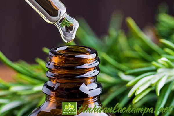 Phân biệt tinh dầu hữu cơ, tinh dầu thường và hương liệu