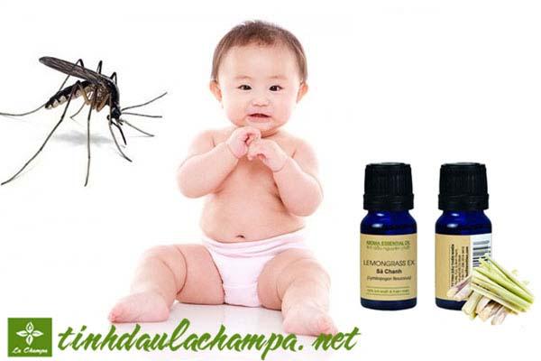 5 loại tinh dầu đuổi muỗi tốt nhất, phòng chống dịch sốt xuất huyết