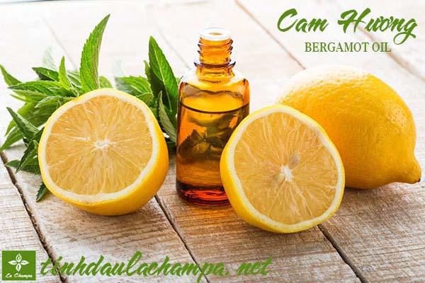 Những công dụng của tinh dầu Cam hương Bergamot với cơ thể