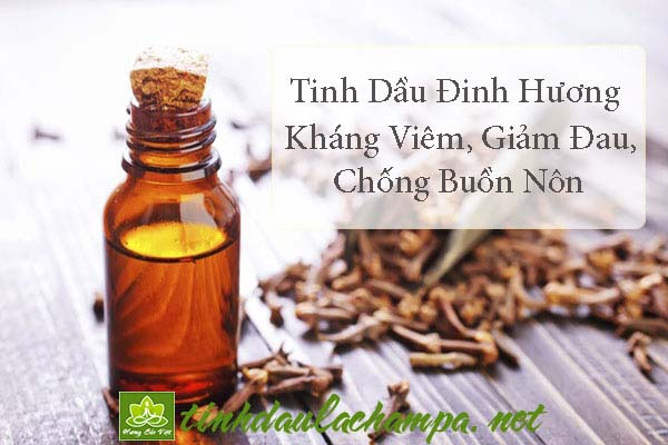 Tinh dầu Đinh hương và những công dụng đối với sức khỏe