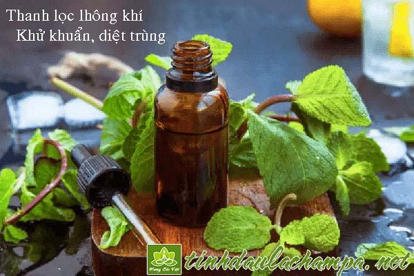 Những loại tinh dầu thiên nhiên tốt cho người mắc bệnh hô hấp